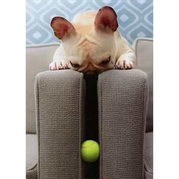 Thank You Greeting Card - Frenchie finds Ball
