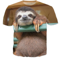 Cute Sloth is Cute!