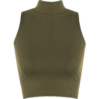 Luann Rib Turtle Neck Crop Top