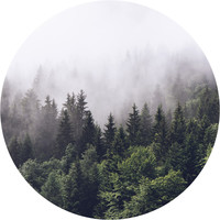 Misty Forest Circle Wall Decal