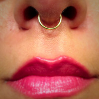 Set of Two Gold Septum Ring 18 Gauge Fake No Piercing Needed Wire Nose Ring