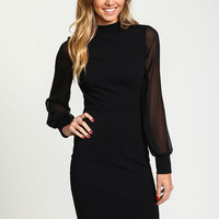 Sheer Mesh High Neck Dress