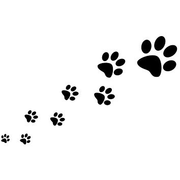 Black Paw Prints Trail Waterproof Temporary Tattoos Lasts 3 to 4 days Choose Small, Medium or Large Sizes