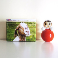 Gallery Wrap Canvas: The Smiling Goat (Netherlands) Wall Art  Ready to Ship, Nursery / kitchen decor