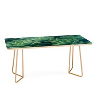 Olivia St Claire Succulents Coffee Table