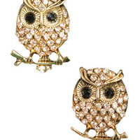 Bling Owl Button Earring - Teen Clothing by Wet Seal
