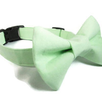 Dog Collar and bow tie- MADE TO ORDER Classic Mint Green and matching bowtie - mint green dog collar, spring dog collar, wedding dog collar