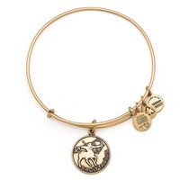 Sagittarius Charm Bangle