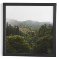 Deny Designs Redwood Forest Framed Wall Art | Nordstrom