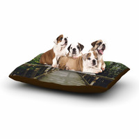 """Chelsea Victoria """"Go Your Own Way"""" Nature Green Dog Bed"""