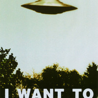 The X-Files - I Want To Believe Print Poster, 24x36   Official  Fan Club Poster