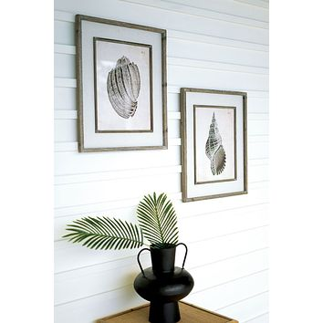 Set Of 2 Framed Black & White Shell Prints Under Glass