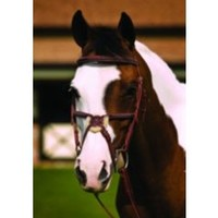 HDR Fancy Raised Padded Figure 8 Bridle