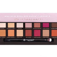 Pink Modern Renaissance 14 Colors Eyeshadow Gift