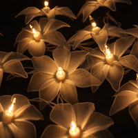 20 White Tone Orchid Flowers Fairy String Lights  Wedding Party Floral Home Decoration