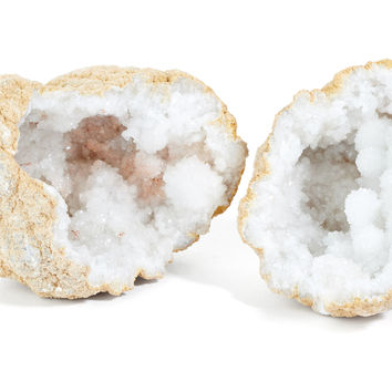 """4"""" Geode, Natural, Rocks, Crystals, Minerals & Petrified Wood"""