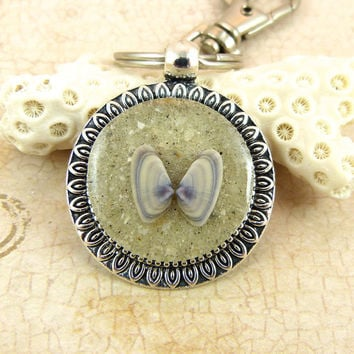 Coquina Seashell Pendant Keychain / Purse Charm / Zipper Pull with Sand and Shell from Sanibel Florida