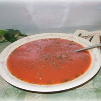 Fake Bowl of Soup Cream of Tomato Food Photo Staging Prop