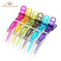 NEW Transparent Sectioning Clips Clamps Hairdressing Salon Hair Clips Grip Crocodile DIY Accessories Hairpins Plastic 6Pcs