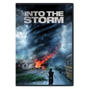 dvd_video Into the Storm (dvd_video)
