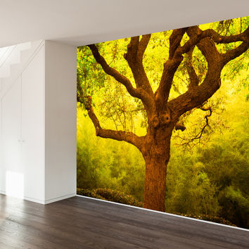 Paul Moore's Tree of Life Cantigney Park, IL Mural wall decal
