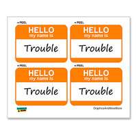 Trouble Hello My Name Is - Sheet of 4 Stickers