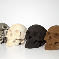 Micro Vince - Human Skull - White, Brown, Black, Zebra