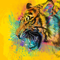 Angry Tiger Drawing, Colorful Animal Art Print by Olechka