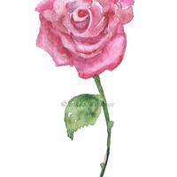 Pink Rose Valentine Card - Watercolor Painting - Love - Red Rose
