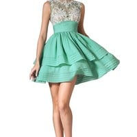 eDressit 2014 New Embroidery Lace Top Cocktail Dress (04142304)