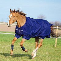 Amigo 600D Hero 6 Turnout - Horse Turnouts from SmartPak Equine