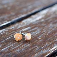 """0.24"""" (6 mm) Seashell Super Tiny Stud Earrings with silver 925 posts - Small Earrings - Everyday Earrings - Childrens Jewelry - Gift idea"""