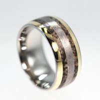 Dinosaur Ring with Gibeon Meteorite and 14K Gold by jewelrybyjohan