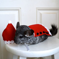 Christmas Santa Claus costume. Chinchilla / hamster / guinea pig / rabbit pet costumes by la Marmota Café.