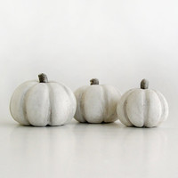 White grey Halloween  pumpkins, miniture,  wonderland home decor whimsical, country harvest, Thanksgiving, autumn fall, set of threen