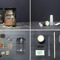 Dino Grow Jar // Lip Balm Multi Kit