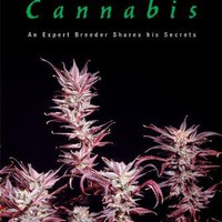 Cultivating Exceptional Cannabis Marijuana Tips Series