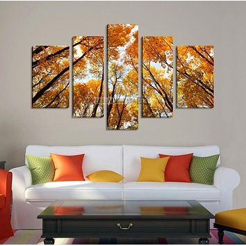 Large Canvas Wall Art Forest in Autumn Canvas Art Print + Large Size + Framed + Ready to Hang