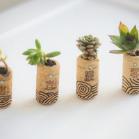 Succulent / Herb Mini Garden Wine Corks Zen Writing by AiyaHMPH