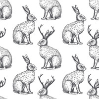 The Legend of Jackalope Removable Wallpaper Decals