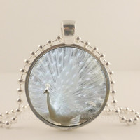 "White Peacock bird, glass and metal 1"" pendant necklace Jewelry."