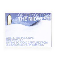 Midwest Penguins Postcard