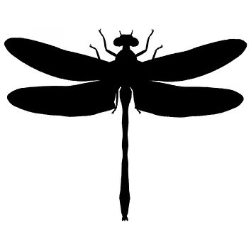 Black Dragonfly Waterproof Temporary Tattoos Lasts 3 to 4 days Choose Small, Medium or Large Sizes