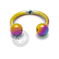 Rainbow Steel Horseshoe