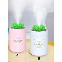 1pc Succulents Design Humidifier
