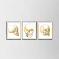 Faux Gold Foil Anatomy of the Human Skull Set of 3 Prints. Anatomical Prints. Human Skull. Scientific Posters. Office Decor. Medical Art.