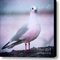 Songs Of A Bird Stretched Canvas Print / Canvas Art By Viaina