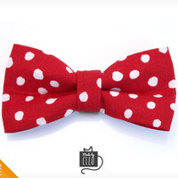 """Pet Bow Tie - """"Mad Professor"""" - Red Polka Dot Detachable Bowtie for Cats + Dogs"""