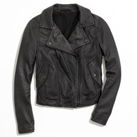 Perfect Leather Motorcycle Jacket