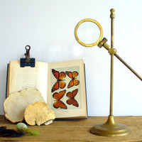 Vintage Magnifying Glass on Adjustable Brass Stand / Industrial Home Decor